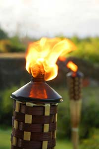 Gas tiki torches provide a great party atmosphere