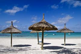Enjoy the shade under one of these palapa umbrellas