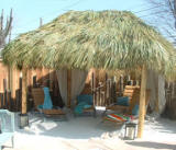 Tiki hut pool side with real palm thatch